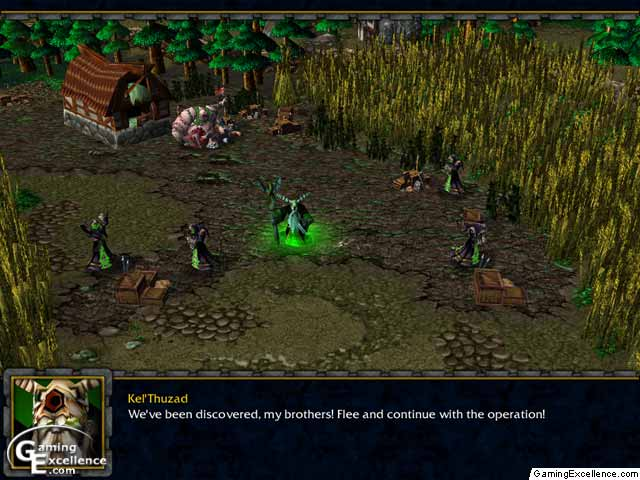 Warcraft Iii Reign Of Chaos Review Gamingexcellence